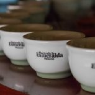 Klatch Coffee Selling Esmeralda Geisha 601 At $55 Per Cup